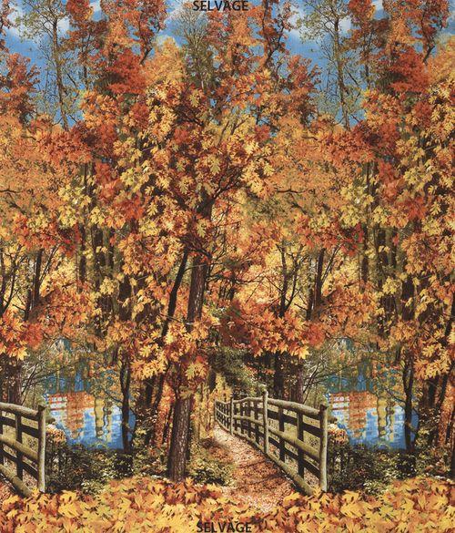 Nature-C3568-Autumn